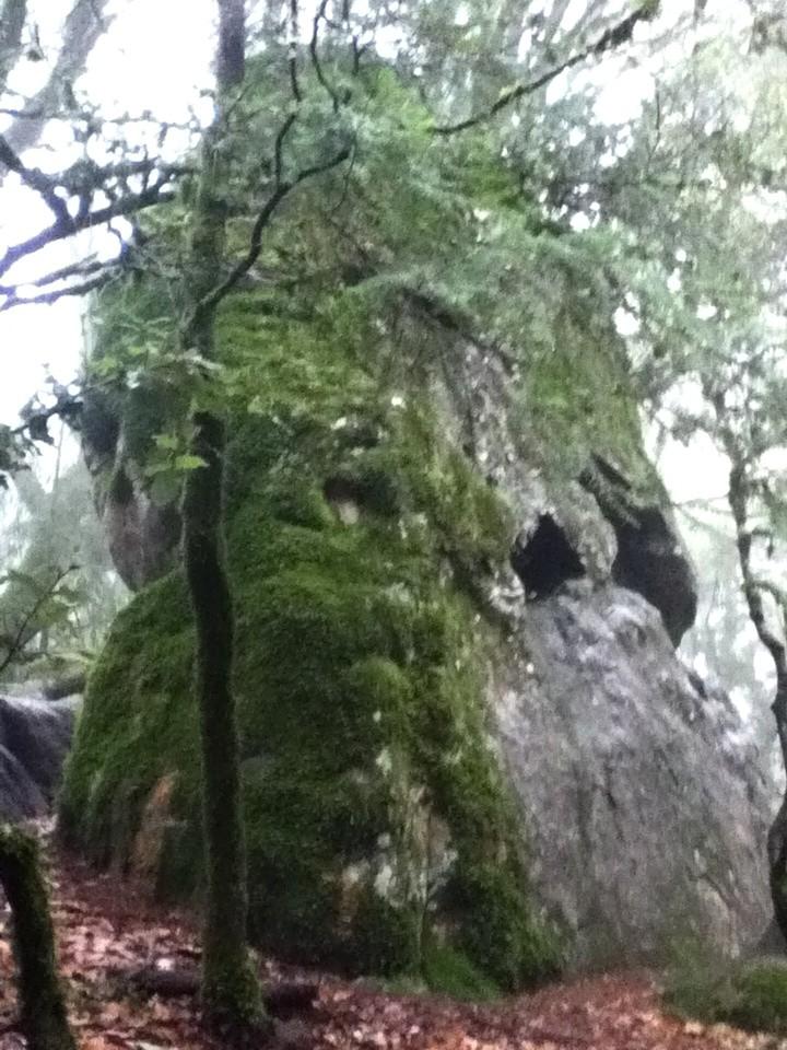 Castle Rock 3