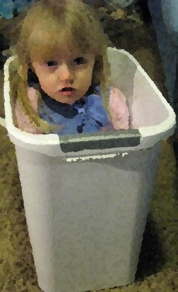 1 rubbish bin