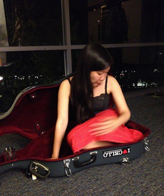cello case i