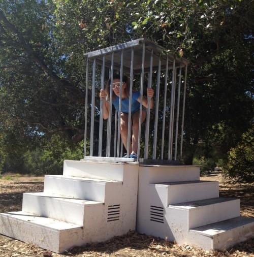 Cage C